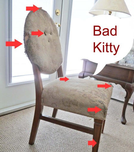Reupholstering a chair after pet damage