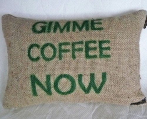 Recycled Burlap Pillow